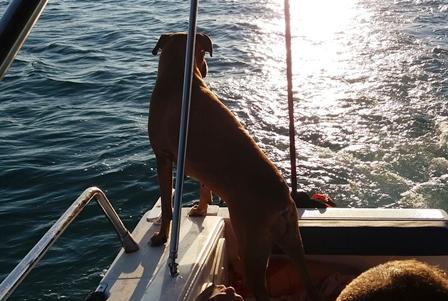 Punta della Suina Yacht